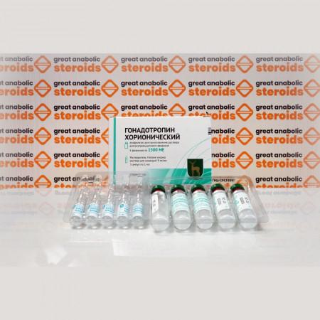 Gonadotropina corionica FGYP Pianta endocrina di Mosca