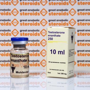 Testosterone enanthate 250 mg Moldavian Pharma